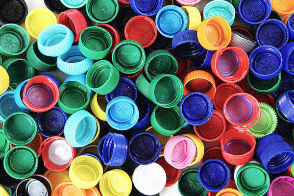 Batterio mangia le bottiglie di plastica, la scoperta a Kyoto